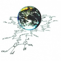 В САФУ пройдет VIII Международная конференция «Физикохимия растительных полимеров»