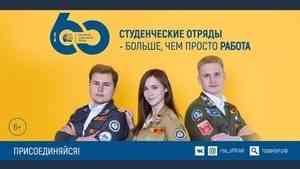 Больше двух миллионов рублей - САФУ на проведение слета студенческих отрядов