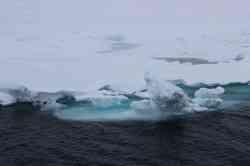 С 20 сентября в САФУ начнет работу «Школа юного полярника»