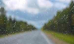 24 августа в Архангельске обещают +15°С и дождь