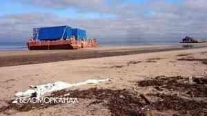 Журналисты обнаружили «фонящие» понтоны на берегу Белого моря близ Неноксы