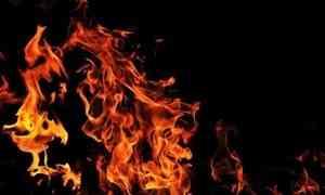 ВШенкурске пожар уничтожил аптеку