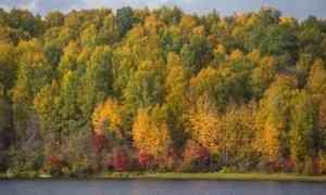 8сентября вАрхангельске сохранится тёплая погода