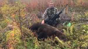 Северодвинский депутат завалил медведя на охоте