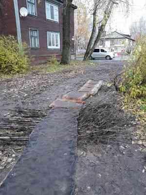 «Как тебе такое, Сергей Собянин?»: жители Архангельска положили вместо тротуара ковровую дорожку