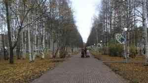 Александр Фролов: «Архангельску нужны новые дорожные развязки и парки»