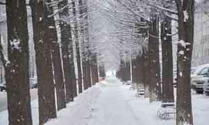 11 ноября в Архангельске будет −5°С и снегопад
