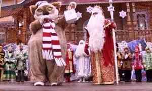 Сказочная делегация Архангельской области поздравила сднём рождения главного Деда Мороза страны