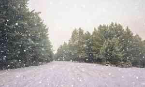 20ноября вАрхангельске обещают снегопад