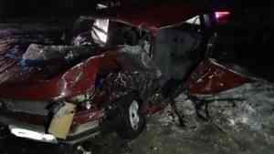 В Плесецком районе водитель без прав погиб в ДТП