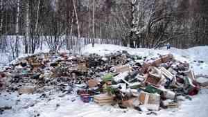 Рост экологической активности в Поморье не влияет на количество незаконных свалок