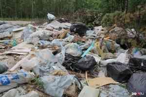 В Шенкурском районе убрали незаконную свалку. Ямы с мусором были больше четырех метров в глубину