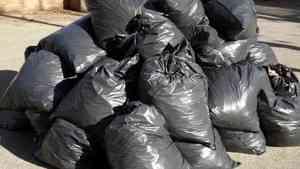 Информация о межрегиональном перемещении мусора в России станет открытой