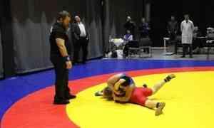 ВАрхангельске завершился VII Кубок Арктики поспортивной борьбе