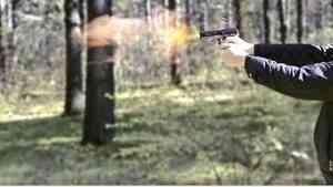 В Каргопольском районе раскрыли заказное убийство