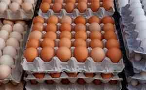 Показатели производства и потребления на российском рынке яиц
