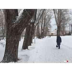 В драмтеатре Архангельска объявят конкурс дизайн-проектов по благоустройству Петровского парка