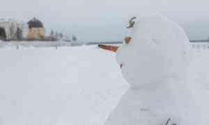 19января вАрхангельске ожидается снег