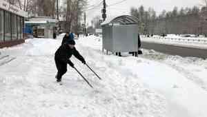 Метель и ветер: синоптики объявили прогноз погоды в Архангельске на 23 января
