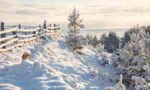 25января вАрхангельске обещают −13°С мороза