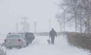 24февраля вАрхангельске похолодает до-2°С