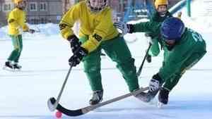 В марте Архангельск станет центром детского хоккея с мячом