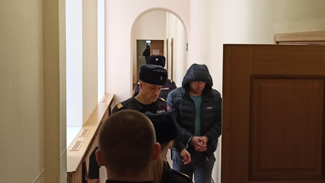 В Архангельске раскаялся владелец иномарки, которая насмерть сбила женщину и собаку