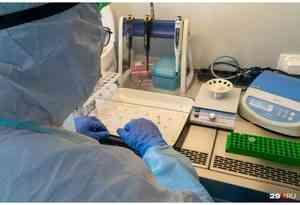 В Архангельской области провели 2457 лабораторных исследований на коронавирус