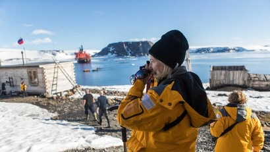 Национальный парк «Русская Арктика» презентовал виртуальную экскурсию по Бухте Тихая