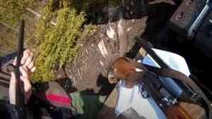 В Кенозерском парке задержали браконьеров-рыбаков и охотников