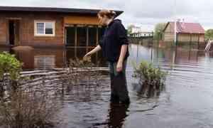 Споследствиями паводка пытаются разобраться вКотласе