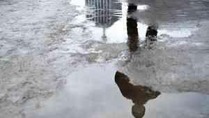 В Архангельской области пройдут дожди