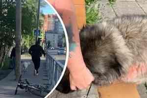 Житель Архангельска безнаказанно распыляет в лицо прохожим перцовую смесь, бьет детей и красит собак