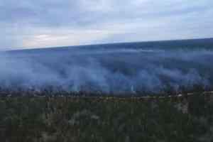 Крупный лесной пожар потушили в Лешуконском районе