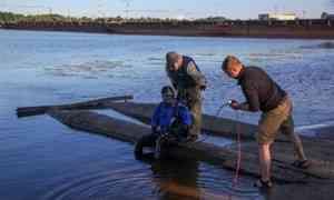 В Архангельске во время купания утонул ребёнок