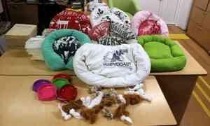 Архангельская библиотека для слепых запустила акцию «Поможем бездомным животным»