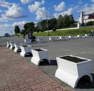 Архангелогородцев приглашают посадить цветы в клумбы на набережной