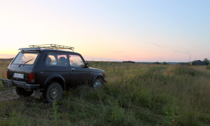 Жители Архангельской области смогут бесплатно получить гектар земли в Арктической зоне