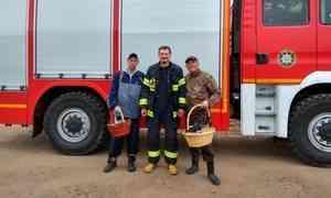 Спасатели помогли грибникам, заблудившимся около деревни Лая