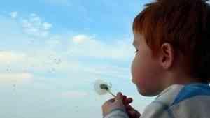 В Поморье двухлетний мальчик убежал в соседнюю деревню
