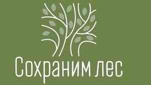 Акция «Сохраним лес-2020» стартует в Поморье