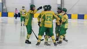 «Водник» продолжает борьбу за выход в полуфинал Кубка России по хоккею с мячом