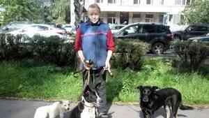 Архангелогородцу, сбившему насмерть пенсионерку и её собаку, дали пять с половиной лет колонии
