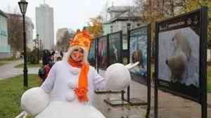 На Чумбаровке в Архангельске открылась выставка «Притяжение Арктики»