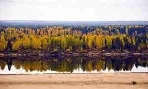 В Ленском районе водолазы ищут пенсионерку, пропавшую пять дней назад