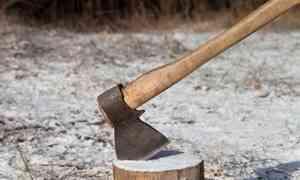 Житель Устьянского района зарубил сожительницу топором за то, что она высказала ему претензии
