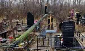 Компания АСЭП восстановит опоры ЛЭН на Маймаксанском кладбище