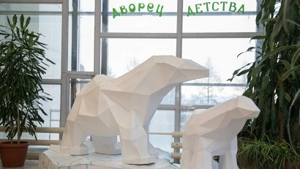 Развитие ДДЮТ в Архангельске должно получить новый импульс