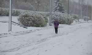 Впервый день зимы вАрхангельске будет −2°С
