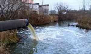 Суд запретил коммунальному предприятию сбрасывать неочищенные сточные воды вреку Банную